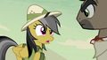 "Daring Do ""free to steal whatever you wanted"" S7E18.png"