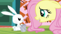 """Fluttershy """"any other fresh veggies"""" S5E21.png"""