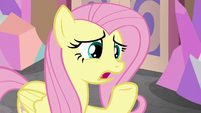 Fluttershy -those guidelines aren't working- S8E1