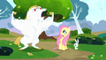 Fluttershy and Angel looking at Bulk S4E10.png