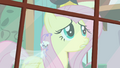 Fluttershy and Breezie looking out window S4E16.png