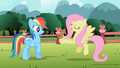 Fluttershy showing bunny to Rainbow Dash S2E07.png