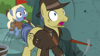 Indiana Jones pony starts an earthquake S7E25
