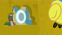 Masked Fluttershy peering into the beehive S7E20