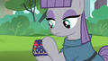 Maud Pie places Boulder in the pouch S6E3.png