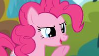 Pinkie Pie pointing S4E09