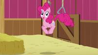 Pinkie hopping S5E11