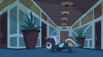 Rainbow Dash Infiltration 5 S2E16