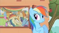 Rainbow Dash likes this S2E8