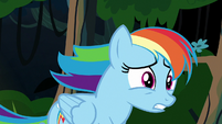 Rainbow Dash worried about A. K. Yearling S7E18