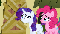 Rarity and Pinkie Pie trying to talk to Fluttershy S2E19