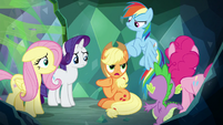 "Applejack ""we gotta find Twilight"" S9E25"