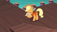 Applejack rolling the map back up S6E22