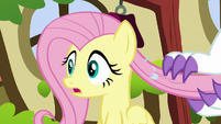 Fluttershy realizes something is wrong S5E13