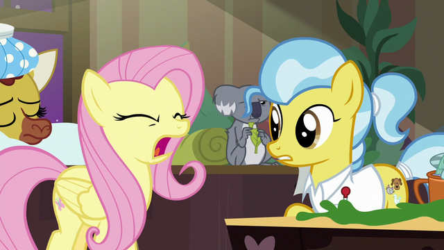 "File:Fluttershy shouting ""no!"" S7E5.png"