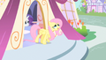 Fluttershy wonderful way S1E20.png