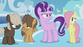 Foals confused by Twilight's words S5E25.png