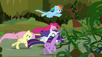 Mane Six charging toward the vines S9E2