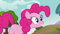 Pinkie Pie 'How could you say no to that' S3E03.png