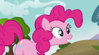Pinkie Pie 'How could you say no to that' S3E03