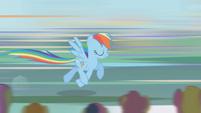 Rainbow Dash charging S1E03