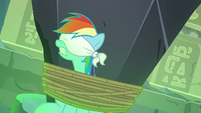 Rainbow Dash tied up and blindfolded S7E18