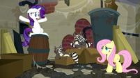 "Rarity ""But what are they doing here?"" S6E9"