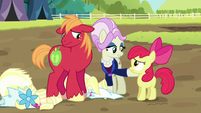 Registration pony -not just unbecoming of a lady- S5E17