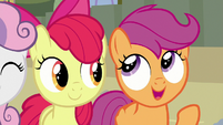 "Scootaloo ""you might even want to live there!"" S8E6"