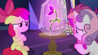 "Sweetie Belle ""as old as our sisters"" S9E22"