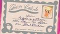 Applejack's birth certificate S5E19.png
