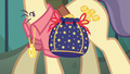 Close-up on Pouch Pony's rock pouch S6E3.png