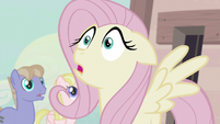 "Fluttershy ""I'd like to join!"" S5E02"