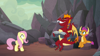 Fluttershy catches Garble with bongos S9E9