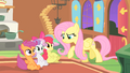 Fluttershy everfree much danger S1E17.png