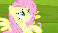 Fluttershy worried about featherless bird S8E18