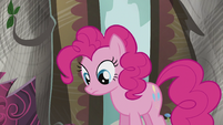 Pinkie sees the book S5E8
