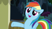 "Rainbow ""editor-in-chief of the Ponyville Chronicle"" S7E18"