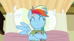 Rainbow Dash loves reading S2E16