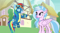Rainbow Dash reaching behind her back S9E3