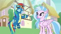 Rainbow Dash reaching behind her back S9E3