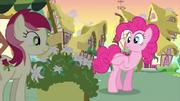 S02E18 Pinkie wita się z Rose