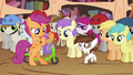 Scootaloo dismantling Pipsqueak's scooter S4E15.png