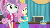 Sweetie Belle crosses in front of Fluttershy EGDS35