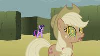 Twilight finds Applejack S2E01