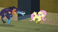 Ahuizotl chasing Fluttershy S4E04