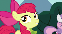 Apple Bloom --as it is for ponies-- S6E19