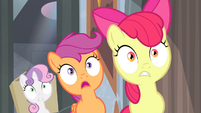 Cutie Mark Crusaders surprised S4E19
