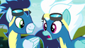 "Fleetfoot ""saved all of Equestria"" S6E7.png"