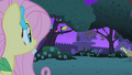 Fluttershy finds the critters S1E26.png